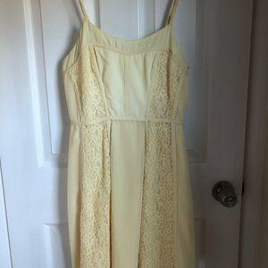 LC Lauren Conrad Lace Soft yellow dress size 6